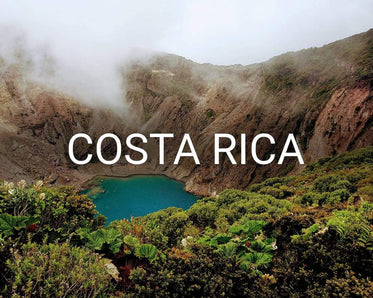 Plant trees in Costa Rica