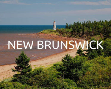 Plant trees for New Brunswick