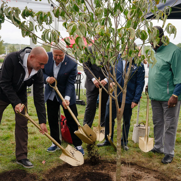 New England Patriots and One Tree Planted Create Memorial Garden in Honor of 9/11