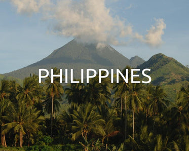 Plant trees in the Philippines