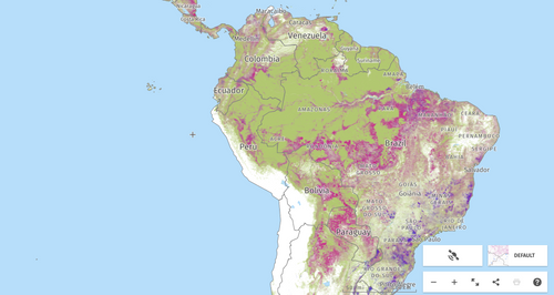 Map of deforestation in the Amazon