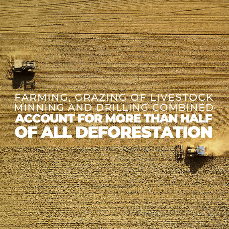 Farming, grazing of livestock, mining and drilling combined account for more than half of all deforestation