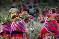 andes community planting trees