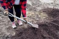Digging a hole to plant a tree