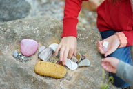 collecting rocks