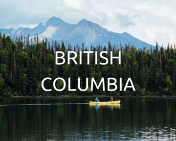 Plant Trees in BC
