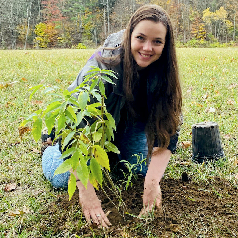 Meaghan Weeden - One Tree Planted