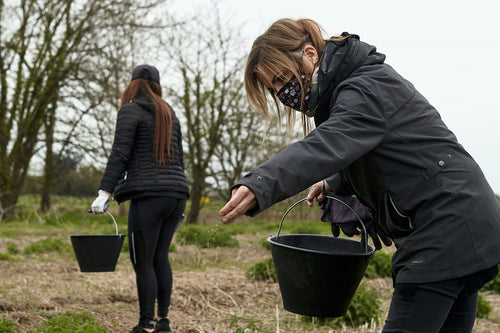 direct seeding milan italy earth day reforestation