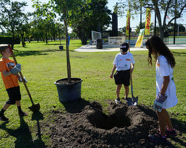 Tree Planting Day in Florida