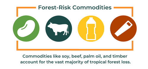 Forest Risk Commodities