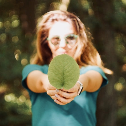 How reforestation benefits companies
