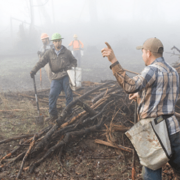 Tree planters in the fog