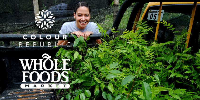 Colour Republic - Whole Foods - One Tree Planted
