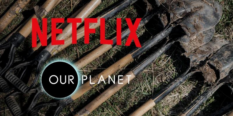 Netflix - Our Planet - One Tree Planted