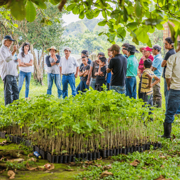Community learning about tree planting