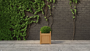 Square Teak Planter (5 sizes available)