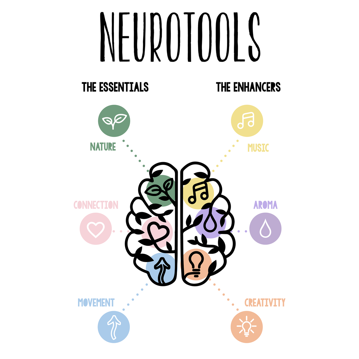 Brain Essentials NZ - My Amazing Brain Neurotools Image