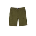 Dickies Pantaloni corti Dickies New York dark olive - Downtown skateshop online