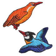 Patch/Ruddy Kingfisher / Black-capped Kingfisher