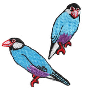 Patch/Java Sparrow