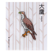 Patch/Goshawk