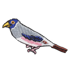 Patch/Grosbeak