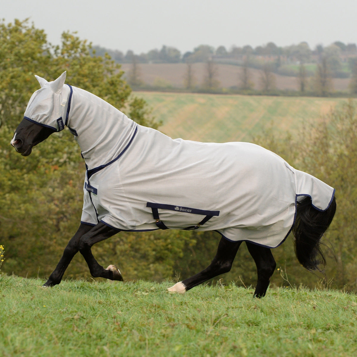 Bucas Freedom Fly Sheet
