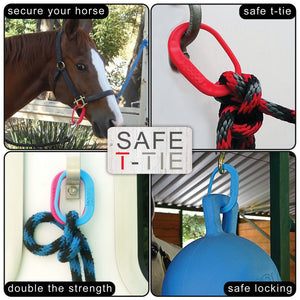 Kensington Safe-T-Ties