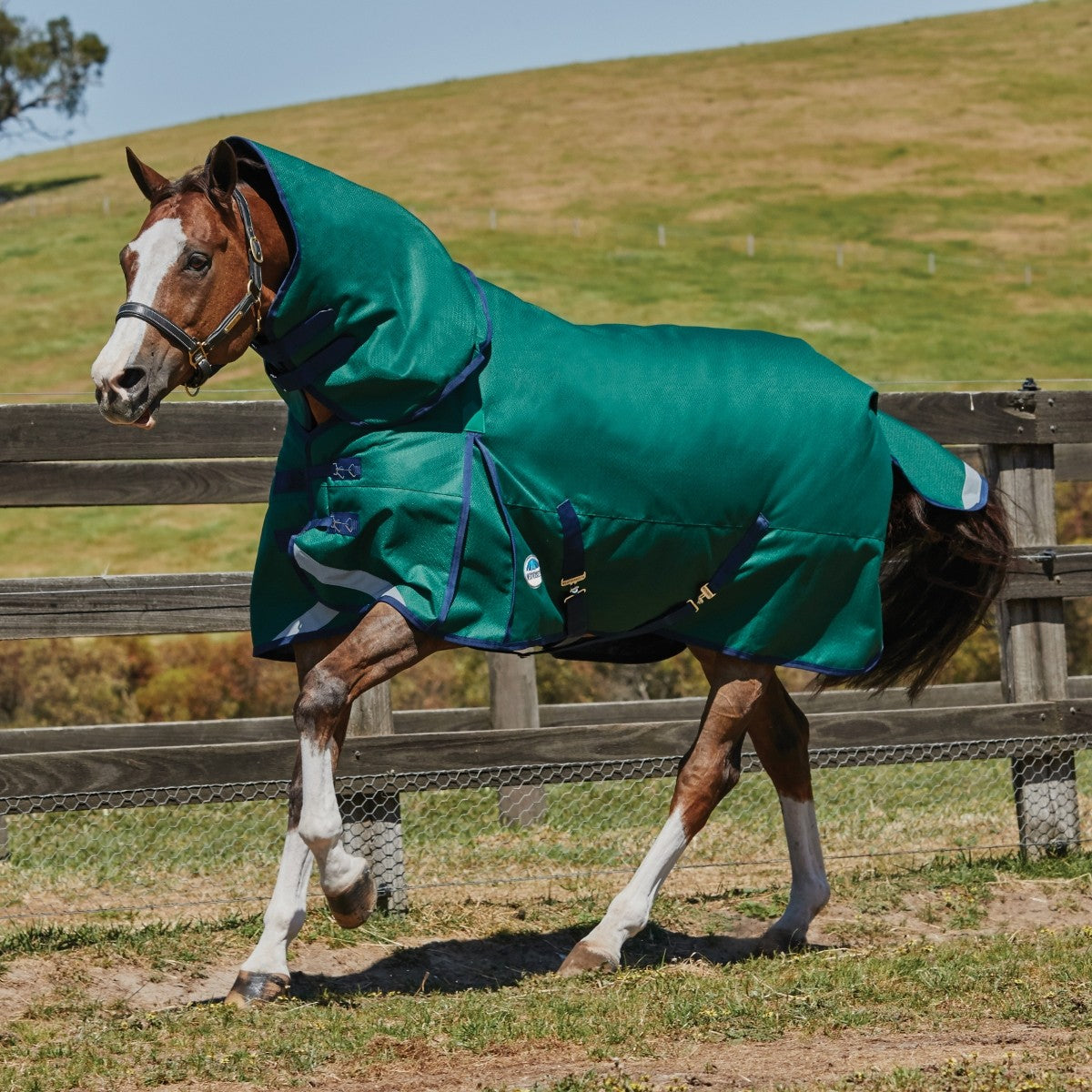 Weatherbeeta ComFiTec Plus Dynamic Detach-A-Neck Heavy Turnout Blanket