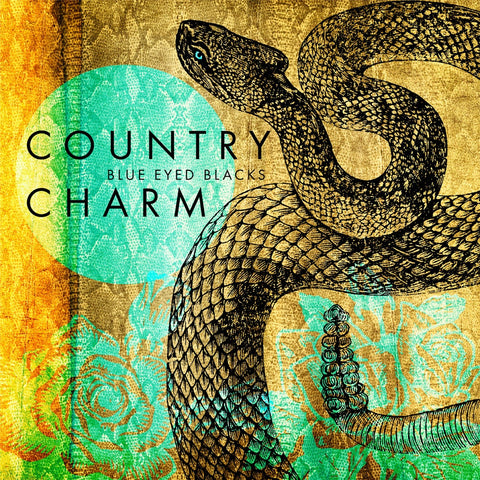 Country Charm CD