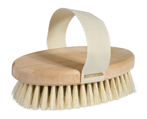Dry Brush/ Bath Brush with Removable Handle