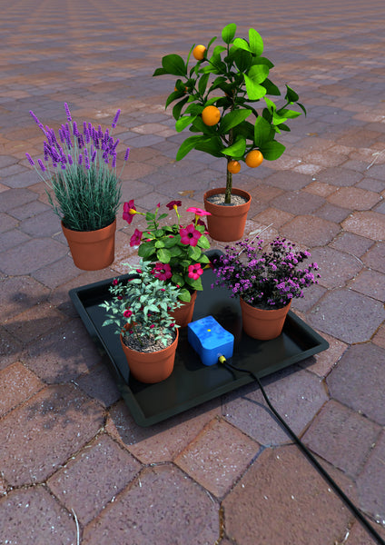Easy2GO watering system