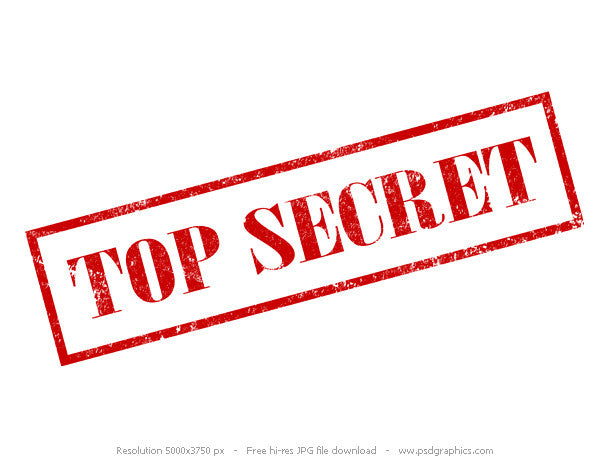 Top Secret- Hanging Charms
