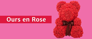 Magasin d'ours en Rose