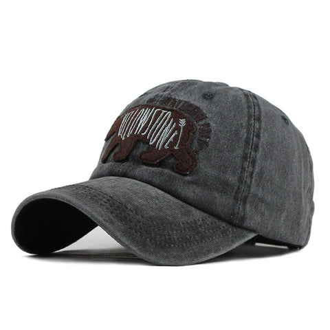 casquette yellowstone grise