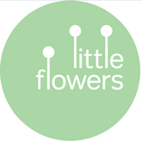 Eco-Friendly Florists Australia - Gift Flowers, Sustainably - itMatters, Blog by itto, a Sydney, Australia-based brand selling eco-friendly phone cases that are commercially and home compostable.