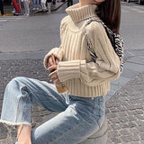 Turtle neck chunky knit sweater (more colors) - CURATED by FS