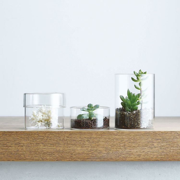 KINTO | Schale Glass Case | 3 Sizes