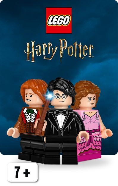 LEGO Harry Potter | McGreevy's Toys Direct