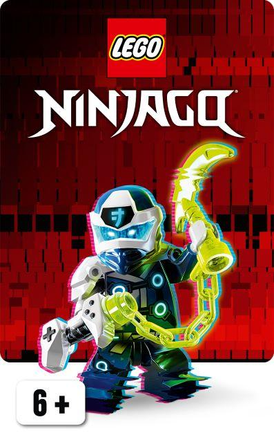 LEGO NINJAGO | McGreevy's Toys Direct