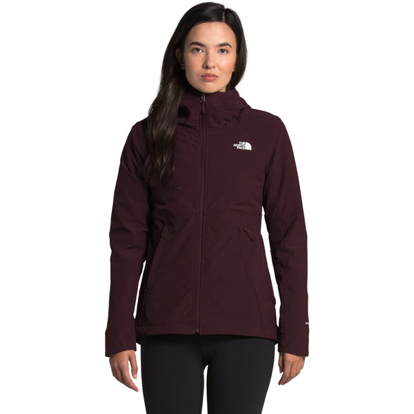 THE NORTH FACE WOMEN'S SHELBE RASCHEL HOODIE IN ROOT BROWN