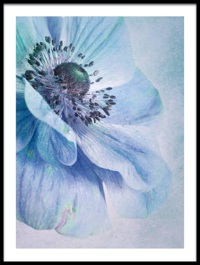Vossington wall art and fine art photography of a blue flower that looks like a painting