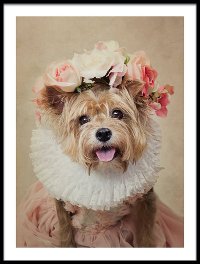 Vossington wall art and fine art photography of a dressed-up cute dog with pink flowers on its head