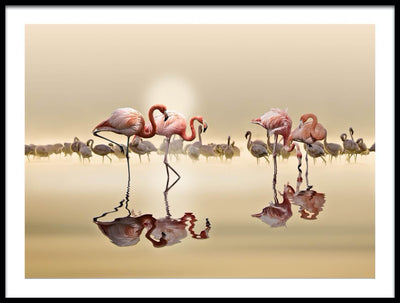 Vossington wall art and fine art photography of a sunset scenery with flamingos in a lake