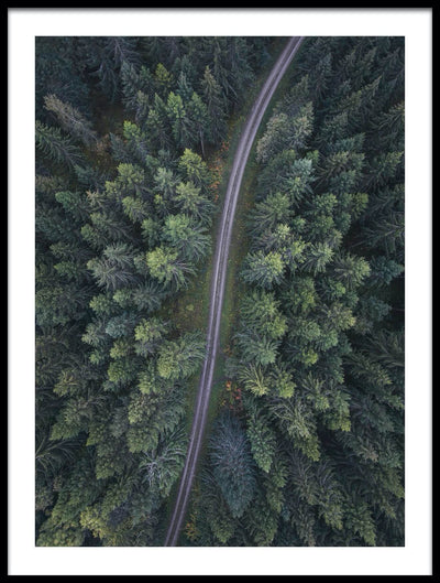 Vossington wall art and aerial photography of a forest scenery with a road through the woods