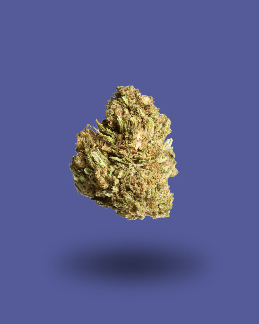 Hempress 1 Hemp Flower
