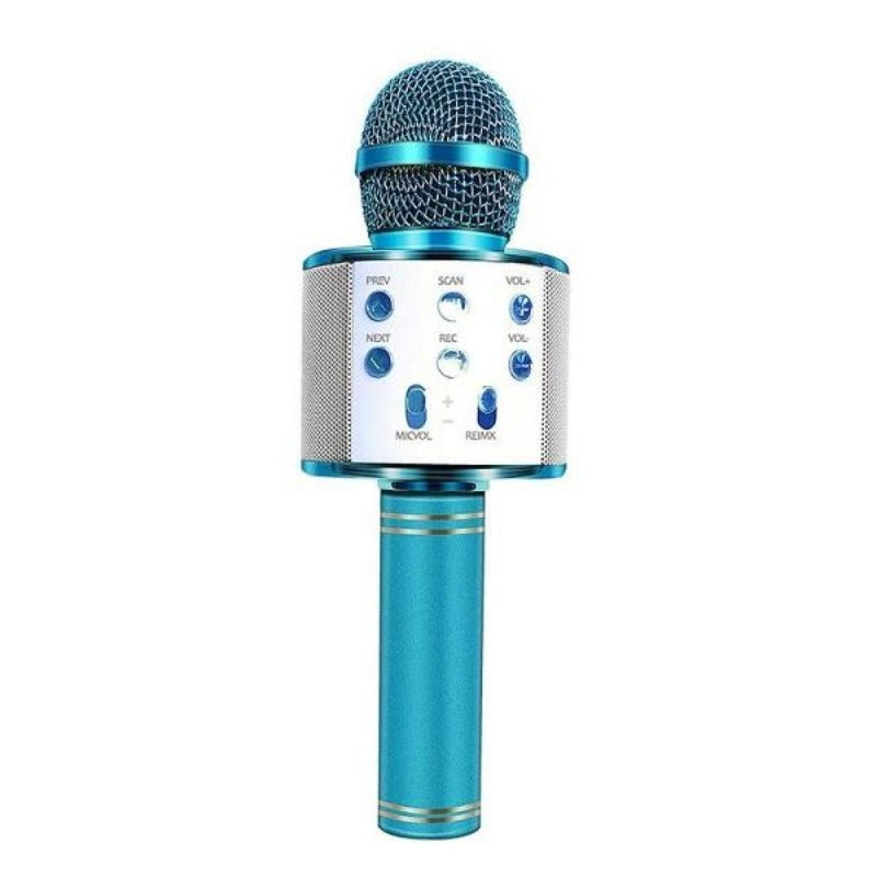 Portable Wireless Karaoke Microphone