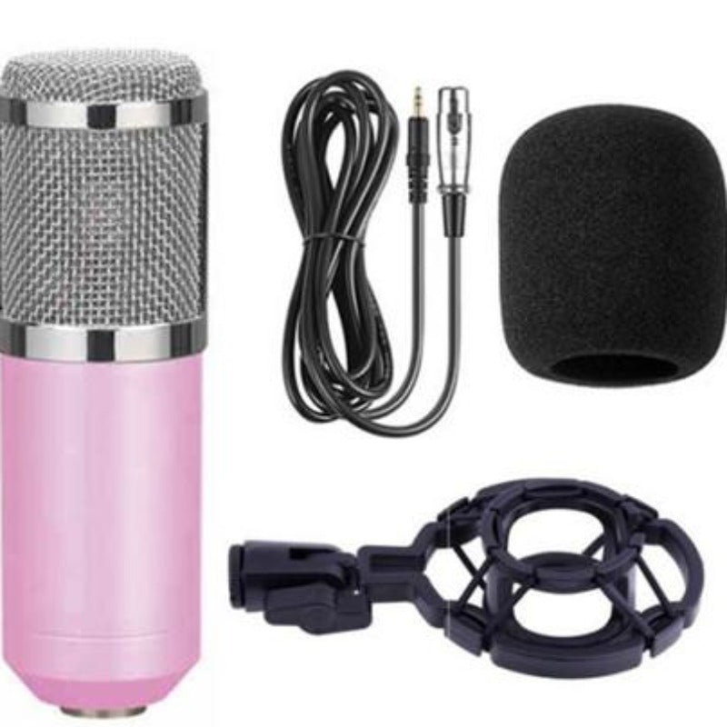 Studio condenser microphone set Blue