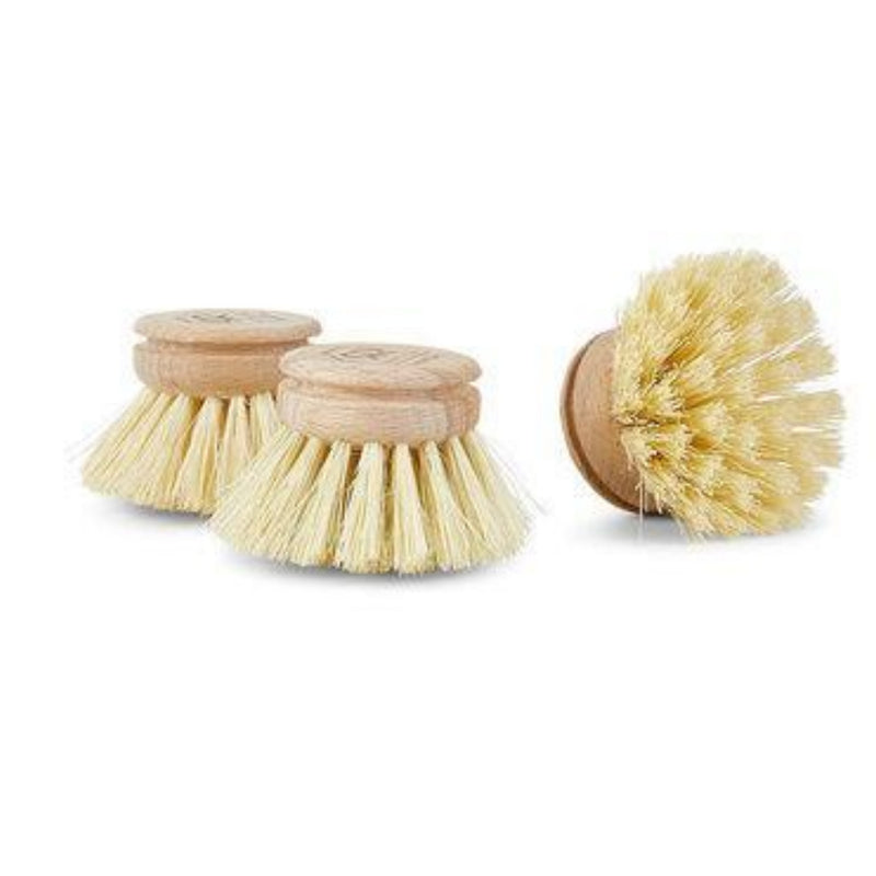 The Unscented Company Replacement Head Brush