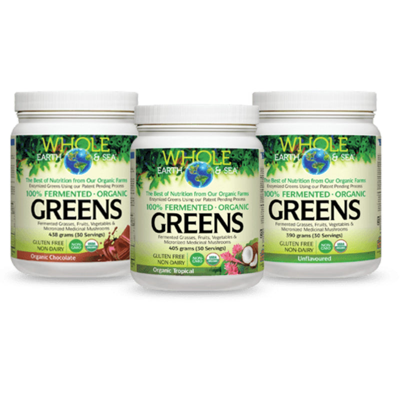 Natural Factors WES 100% ferm org green unflavoured 390g
